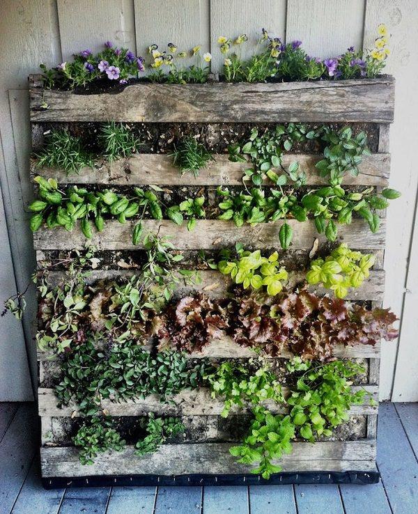 jardim vertical balcao - Como criar e cuidar de um jardim vertical
