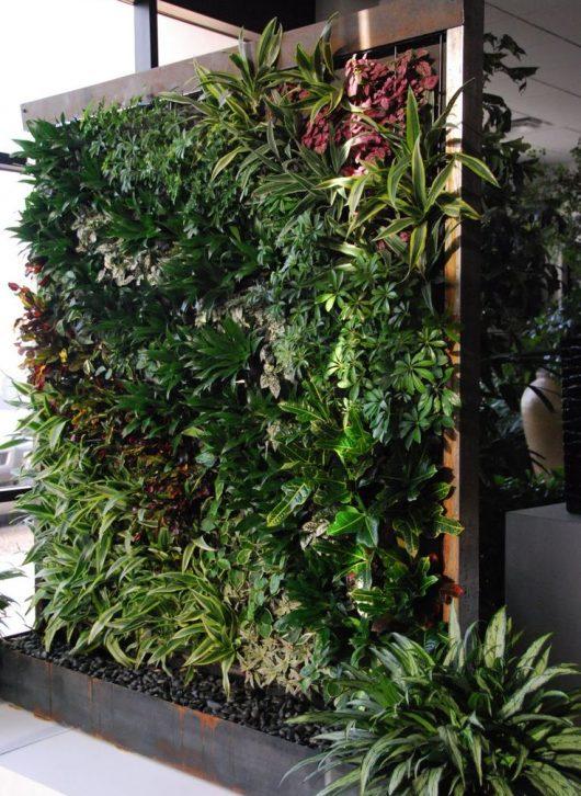 jardim vertical01 530x726 - Como criar e cuidar de um jardim vertical