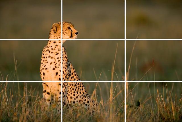 regra de 3 na fotografia