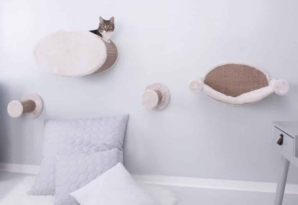 decoracao amante animais arquiteta 6 1024x704 - Ideias de decoração para quem é amante de animais