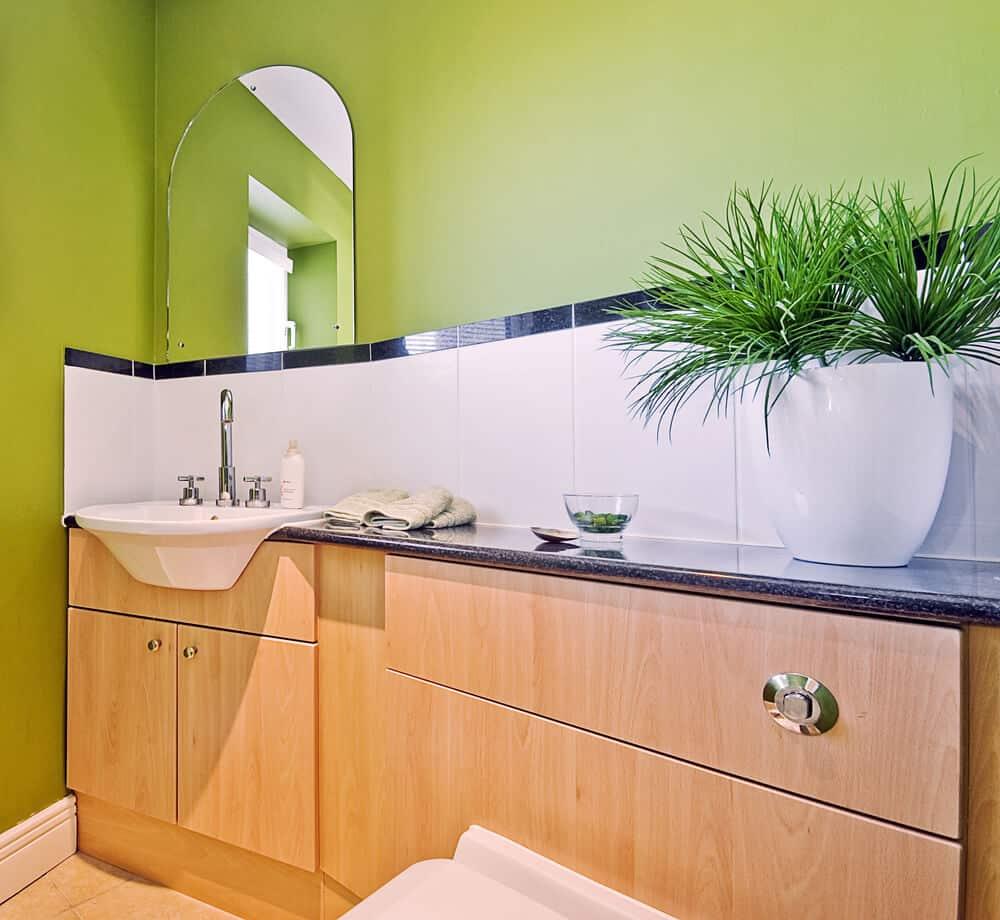 Banheiro com parede verde e vaso branco com planta.
