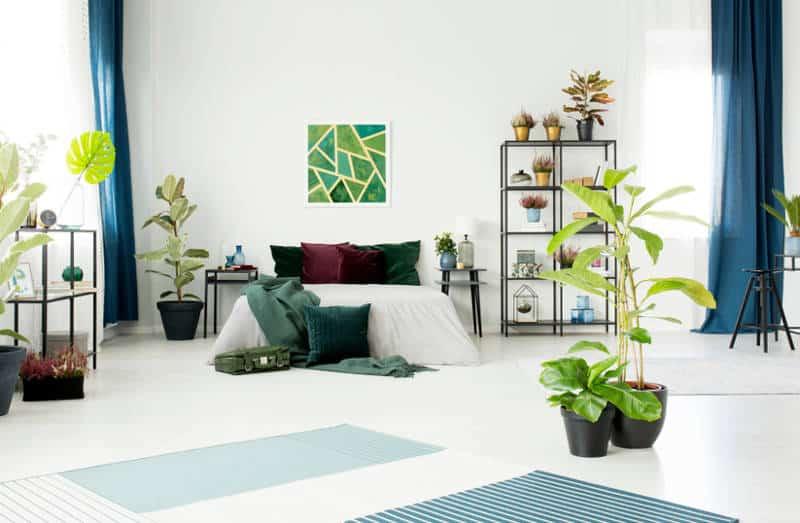 quarto com cortinas azuis e vasos de plantas - As cores pantone do ano para 2020 foram anunciadas acidentalmente?